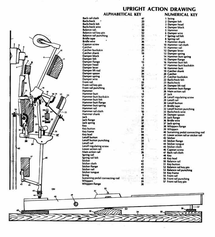 baby grand piano parts diagram  baby  free engine image